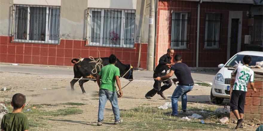 Bursa'dan Kurban Bayramı manzaraları...