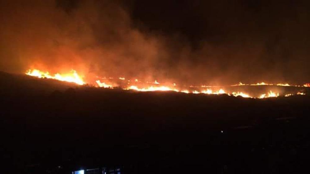 Bursa'da orman yangını! 1