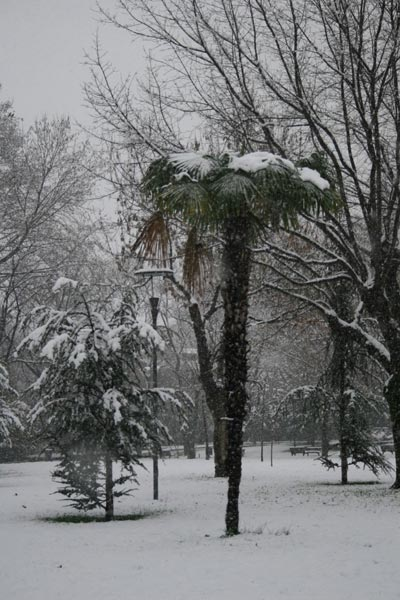 Bursa'da kartpostallık kar manzaraları 5