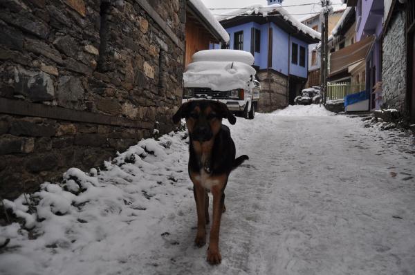 600 yıllık Osmanlı köyü Cumalıkızık, kışın ayrı güzel 6