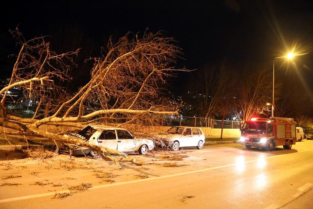 Fırtına yıktı geçti! Çatılar uçtu, ağaçlar devrildi 1