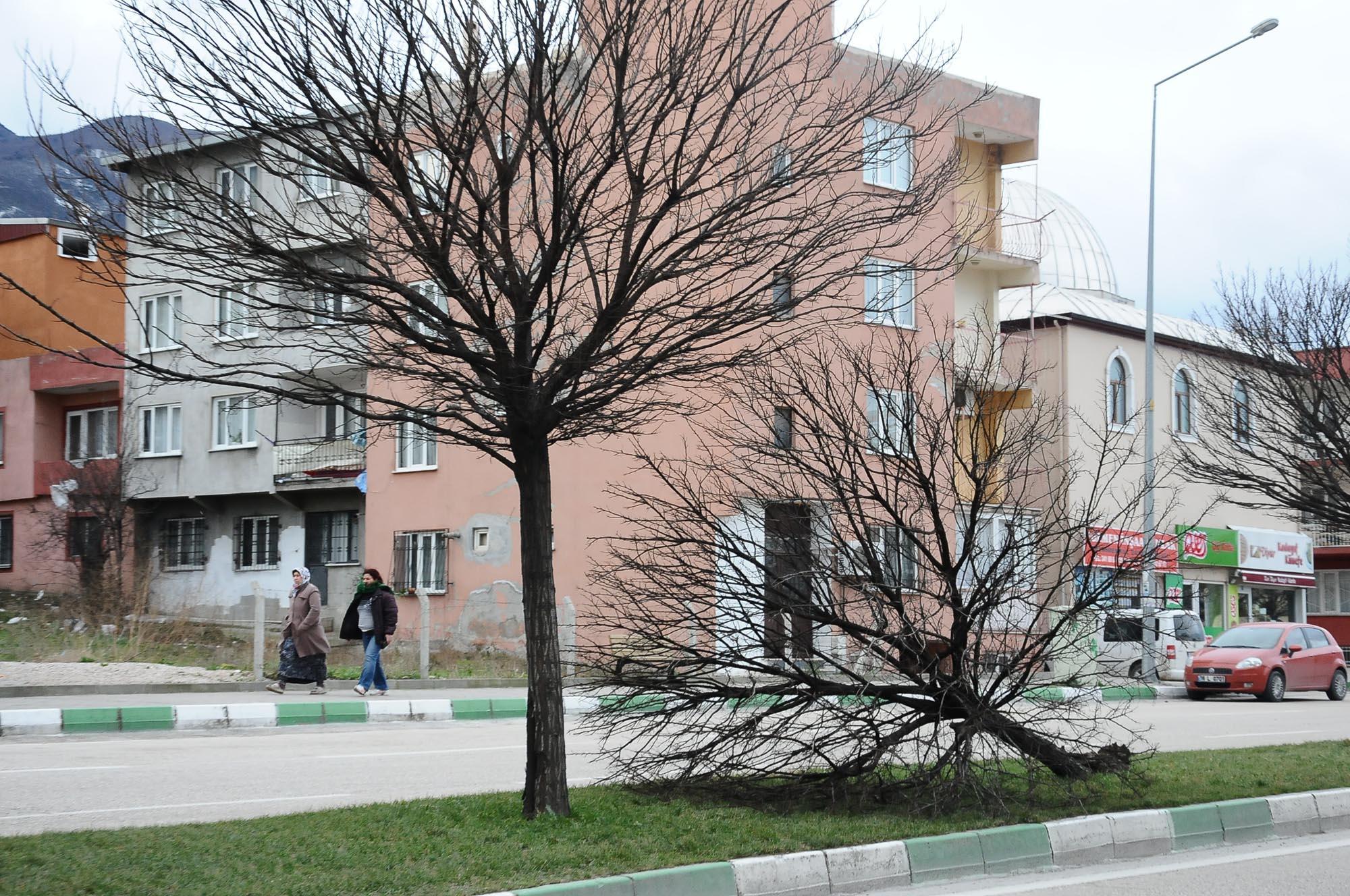 Bursa'da lodos hayatı felç etti 34