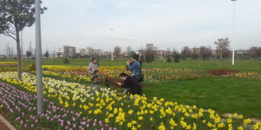 Bursalılar parklar akın etti!