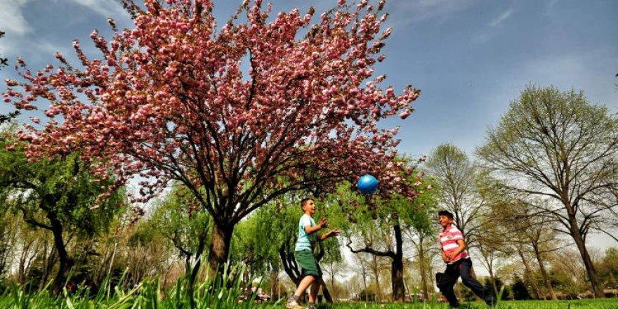 Bursa'nın en güzel bahar fotoğrafları büyüledi