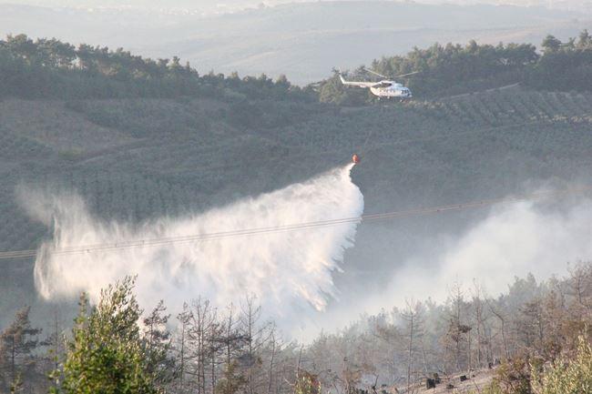 Bursa'daki yangın söndürüldü! 1