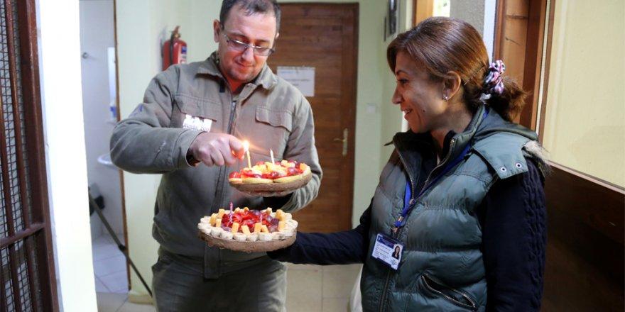 Lemurların meyveli pasta keyfi