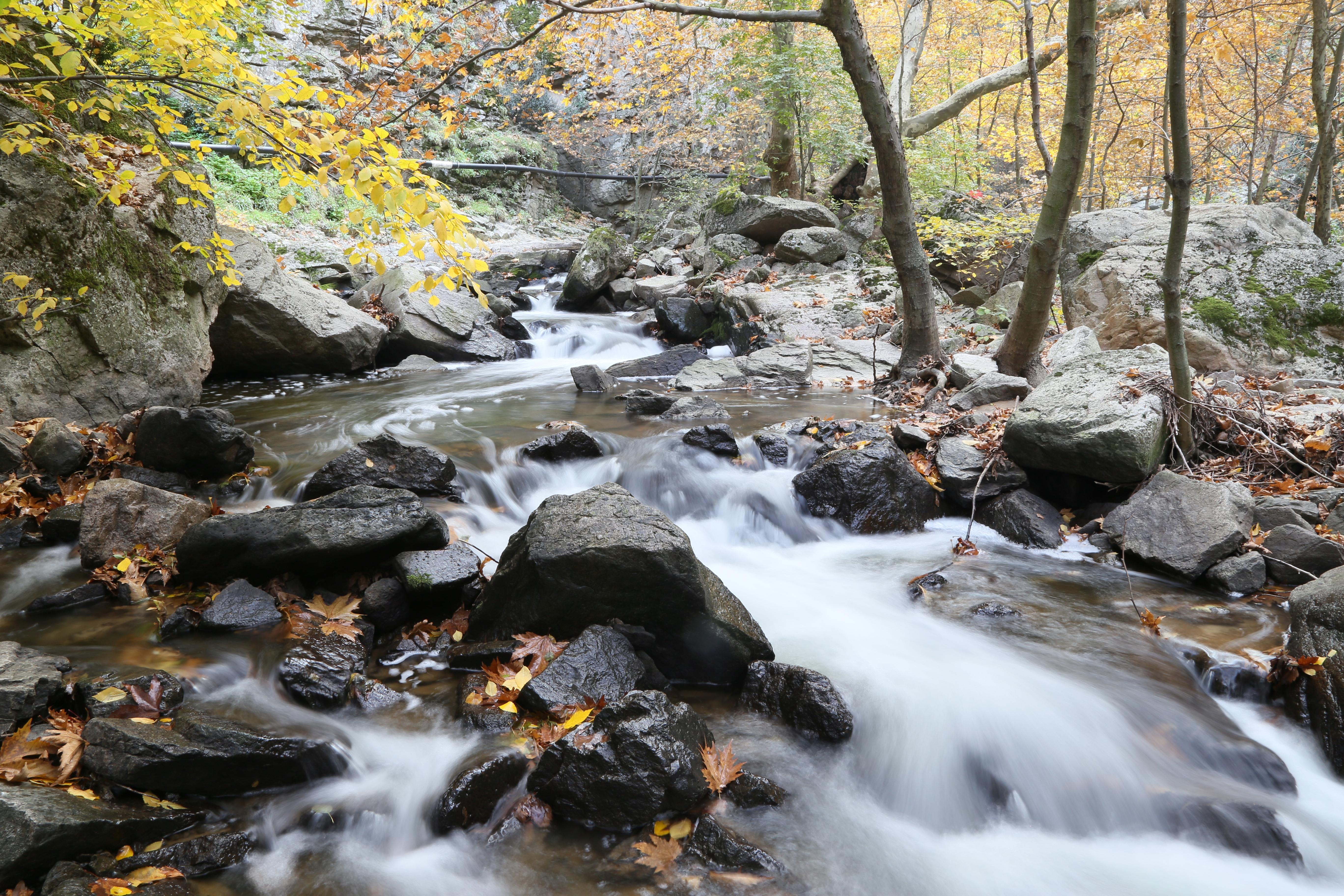 'Sadağı Kanyonu'nda sonbahar 1