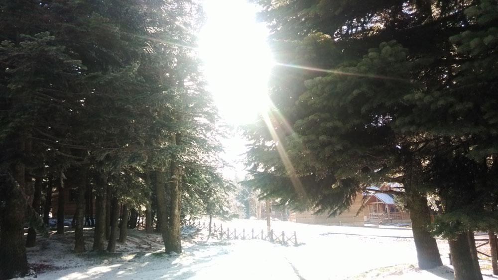 Kışa girerken Uludağ 1