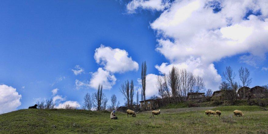 Uludağ'ın yaylaları turizme açılıyor