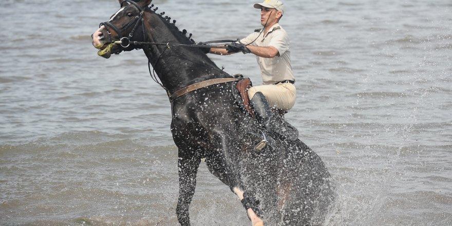 Türk Silahlı Kuvvetlerinin atları Bursa'da böyle eğitiliyor