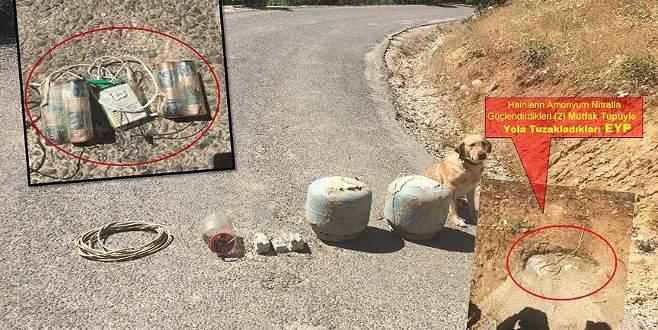 Yola tuzaklanan 100 kilogramlık patlayıcı imha edildi