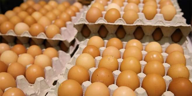 Böcek ilaçlı yumurta krizi büyüyor