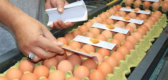 Yumurtaya tazelik ayarı getiriliyor