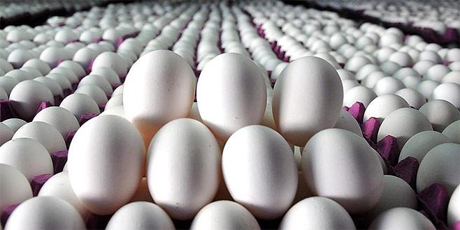 Yumurtanın kolisi 5 liraya düştü
