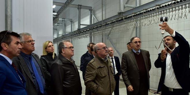 Mustafakemalpaşa'ya modern et entegre tesisi
