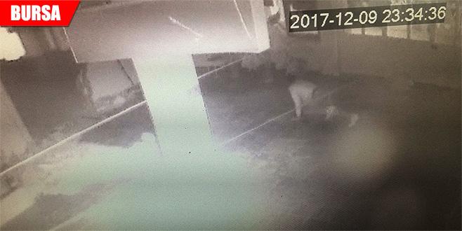 Kamerayı fark eden hırsız emekleyerek kaçtı