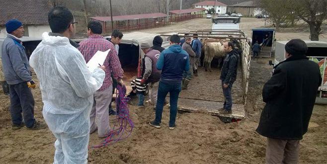 Genç çiftçilere destek