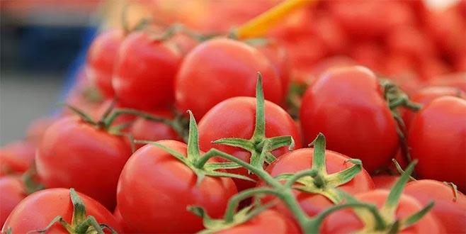 Dört Türk şirketine daha domates izni geliyor