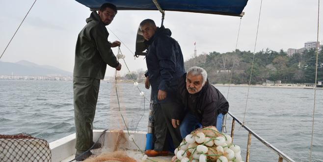 Balıkçılar kıyıya eli boş dönüyor!