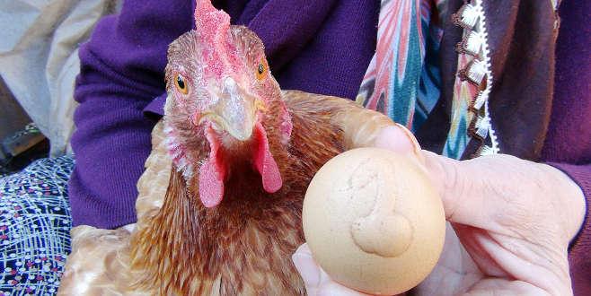 Bu yumurta 1000 lira