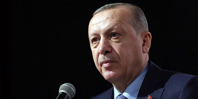 Erdoğan'dan 'orman varlığını artırma' çağrısı