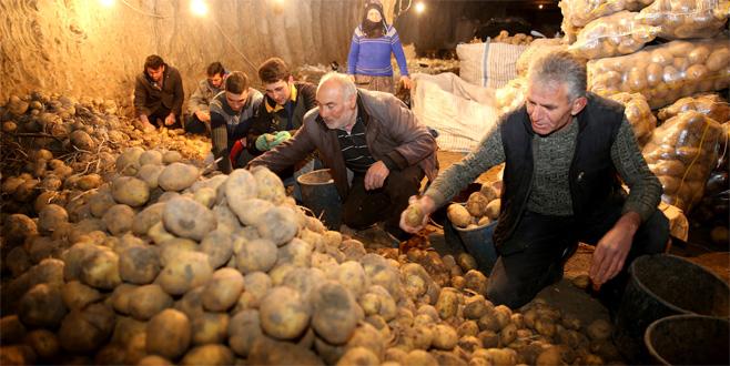 Depoda kalan patates için teşvik talebi