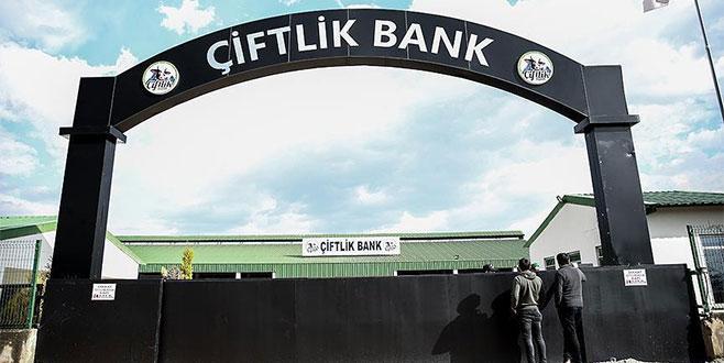 'Çiftlik Bank' soruşturmasında yeni detaylar