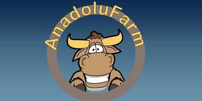 Anadolu Farm soruşturmasında 1 tutuklama daha