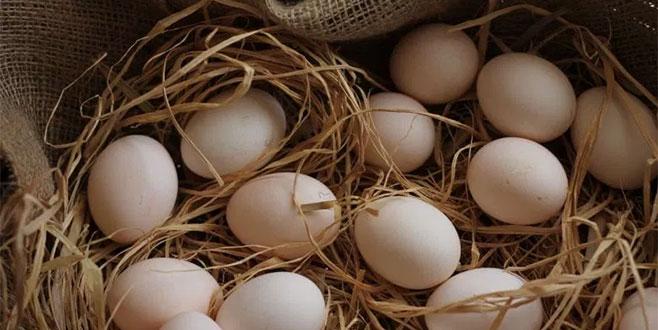 Yumurtada indirim uyarısı