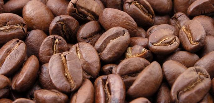 En çok kazanç kahvede