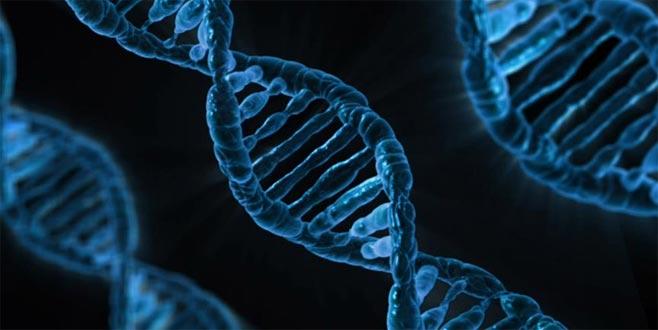 Milyonlarca canlının genom haritası çıkarılacak