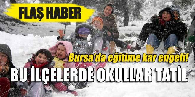 Bursa'da bu ilçelerde okullar tatil!
