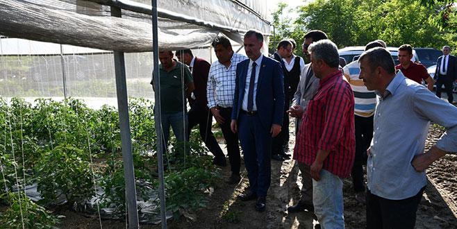 Taban: İnegöl tarımda yükselen bir değer