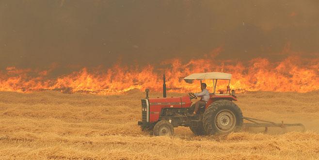 Tarla yangını ormana sıçradı, söndürülemiyor!