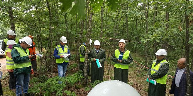 Daha bakımlı ormanlar için üretim tatbikatı