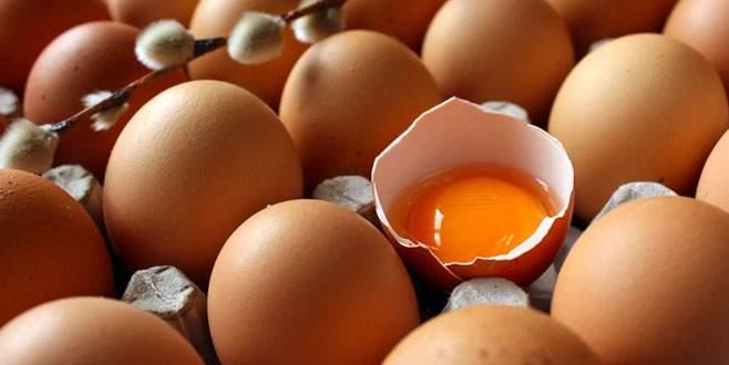 Yumurta ihracatının yüzde 81'i Irak'a