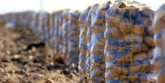 Patates fiyatlarındaki artışla ilgili bir açıklama daha