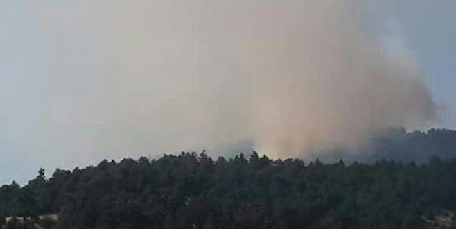 Bursa'nın Orhaneli ilçesinde orman yangını