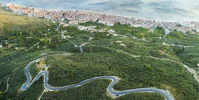 'Zeytinin başkenti'nden en güzel fotoğraflar