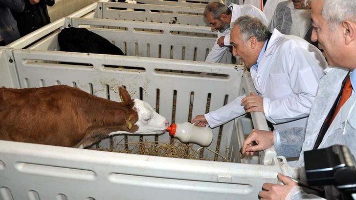 Eski Gıda,Tarım ve Hayvancılık Bakanı Ahmet Eşref Fakıbaba: Halkı aydınlatın