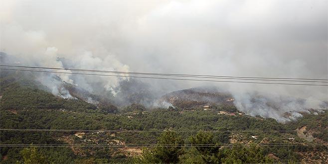 Hatay'da orman yangını!