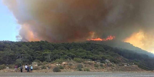 Turizm cennetinde orman yangını