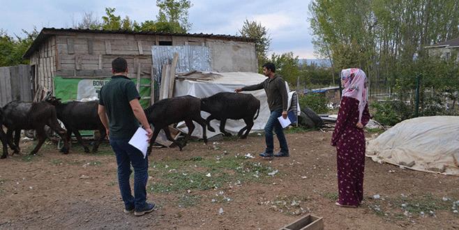 Bursa'da genç çiftçilere destek