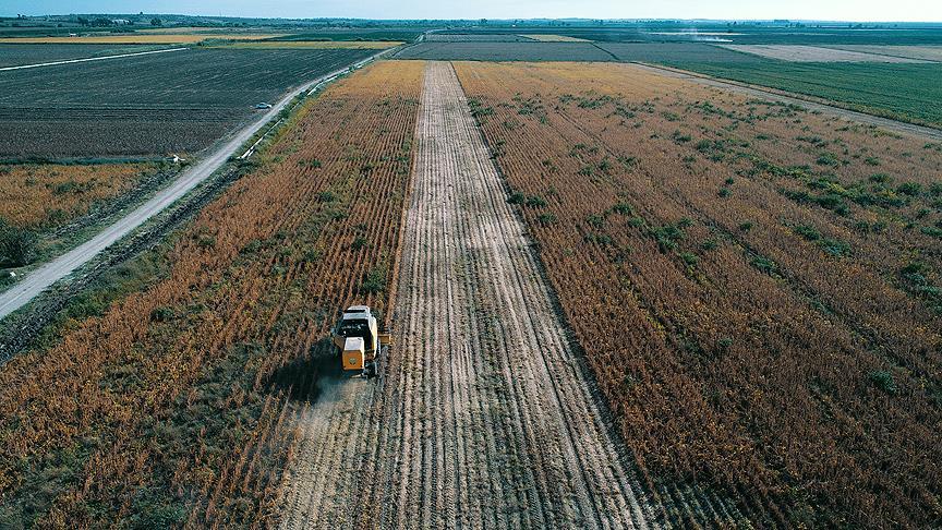 Tarım Krediden üretici için '5 milyar lira' hedefi