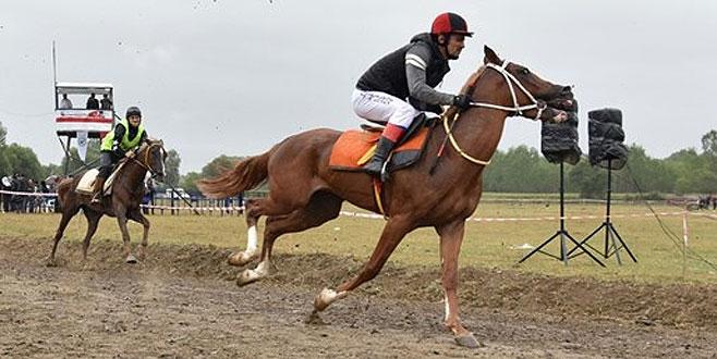 Bir ayda 15 yarış atı öldü!