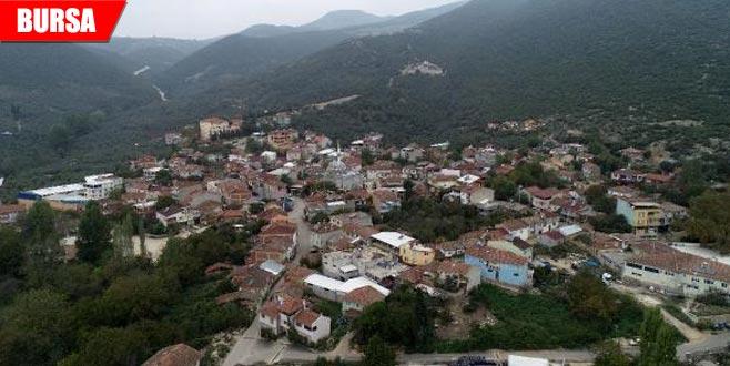 Dünyanın birçok ülkesine ihracat yapan köyde üretim hızlandı