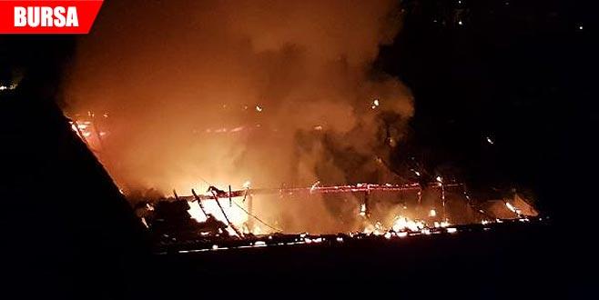 Korkutan yangın! Geceyi alevler aydınlattı