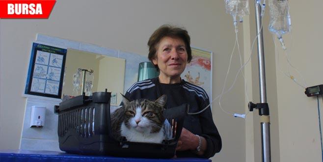 Leydi'nin tedavisi için kilometrelerce yol kat ediyor