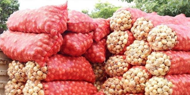 Azerbaycan'dan soğan gelecek! Fiyat düşebilir