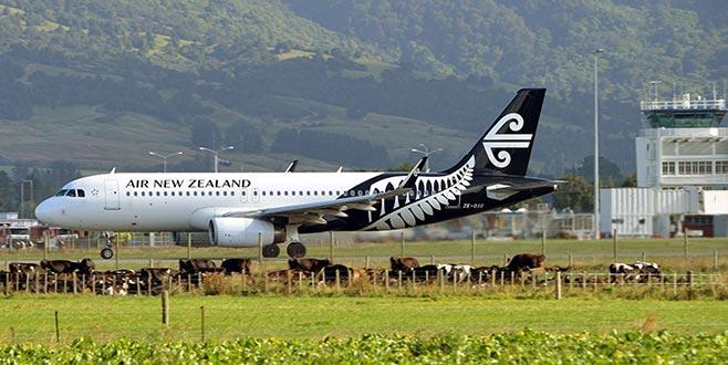 Yeni Zelanda'da şüpheli paket alarmı
